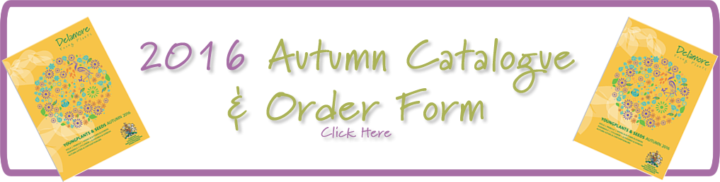 2016 Autumn Catalogue and Order Form
